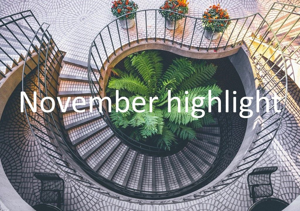 November highlight